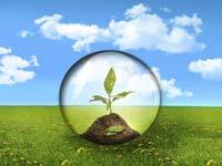 אנרגיה ירוקה / צלם: פוטוס טו גו